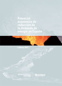Documento de Informe anual de Economics for Energy
