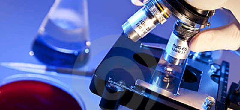 Uso de nanopartículas magnéticas en la lucha contra células tumorales