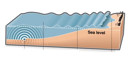 Sensores submarinos para la detección de tsunamis