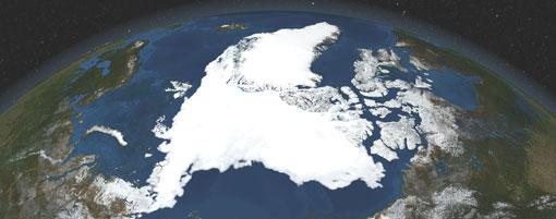 """Un """"bosque"""" bajo el hielo del Ártico"""