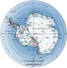 En el Mioceno, la Antártida estaba rodeada de vegetación