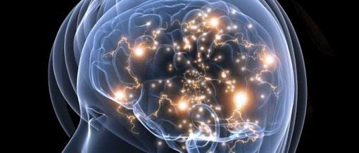 Proyecto Connect, una cartografía del cerebro
