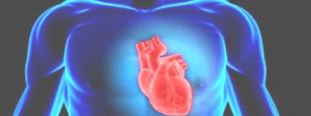 En 5 años podría estar disponible un fármaco para prevenir ataques cardíacos