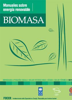 Documento de Biomasa