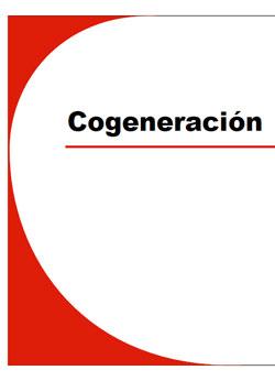 Documento de Cogeneración