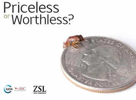 Documento de Informe Priceless or Worthless