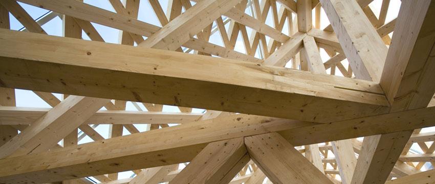 Uso de la lignina como materia prima para la producción de preservantes para la madera