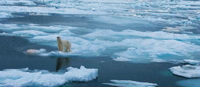 En 4 años podría desaparecer todo el hielo del Ártico