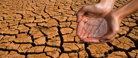 Cada minuto se desertifican 23 hectáreas de suelo