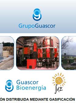 Documento de GD por gasificación de biomasa