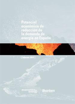 Documento de Informe anual de Economics for Energy